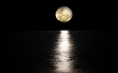 2021: Daily Transformation In Harmony with the Moon Cycles