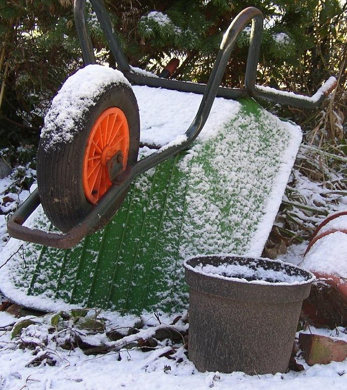 Winter In The Garden by Jeanie Alksne